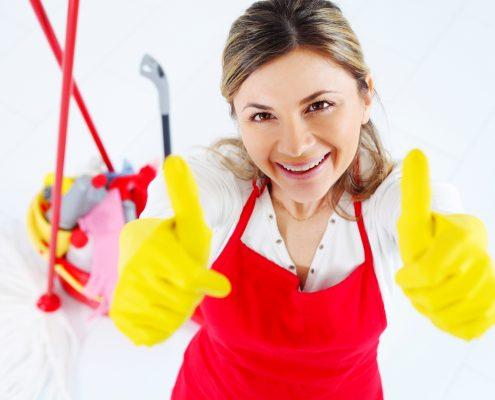 Reinigung von Haus & Fenstern in Tetovo, Mazedonien - Pollog Clean